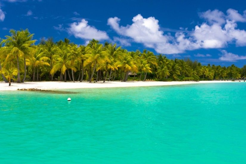 1920x1080 Wallpaper summer, maldives, tropical, beach, palm trees