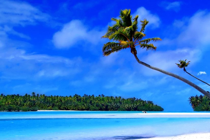 <b>Caribbean Beach</b> Live <b>Wallpaper</