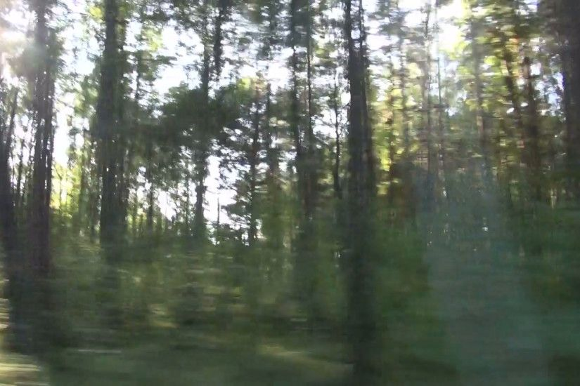 blur speed background. Forest landscape from car window Stock Video Footage  - VideoBlocks