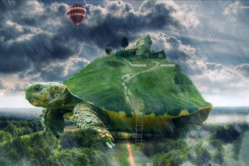 Small Farm On The Turtle Wallpaper 707758 ...