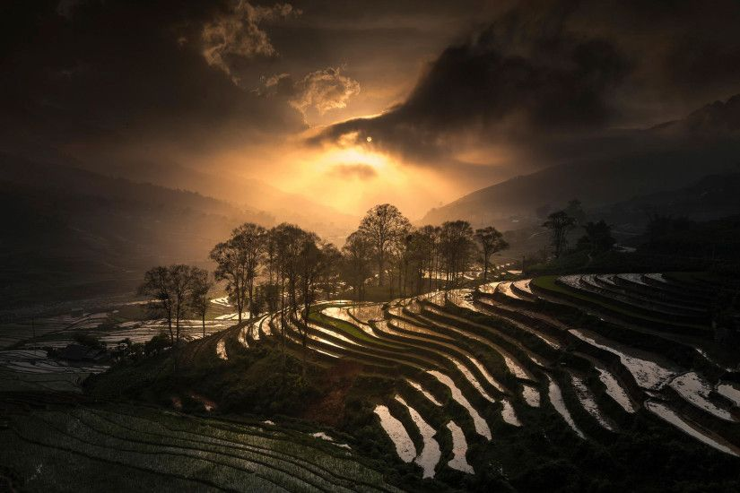 Download wallpaper rice terrace, vietnam, sapa with resolution 1920 x 1080  and # 15534