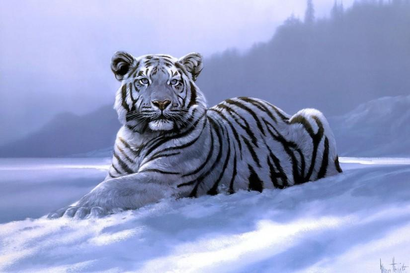 White Tiger in the Winter Wallpaper Full Widescreen #41951 - Ehiyo.