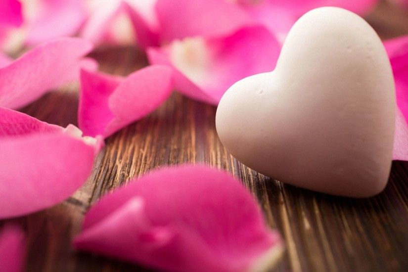 pink flower cute heart rose HD wallpapers