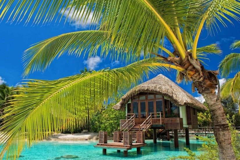 palm Trees, Resort, Beach, Tropical, Water, Bungalow, Sea, Summer, Nature,  Landscape Wallpapers HD / Desktop and Mobile Backgrounds