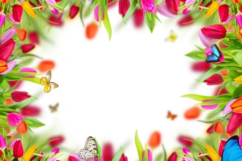 Spring Flowers Tulips Frame Butterflies Colorful Desktop Backgrounds -  2500x2300