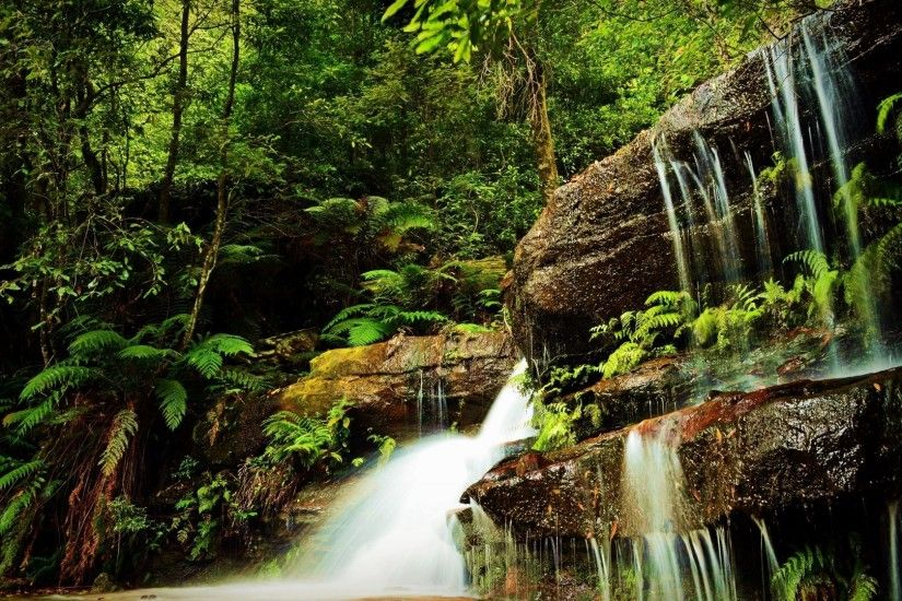 Waterfalls - Forest Nature Waterfall Trees Wallpapers Desktop Free Download  for HD 16:9 High