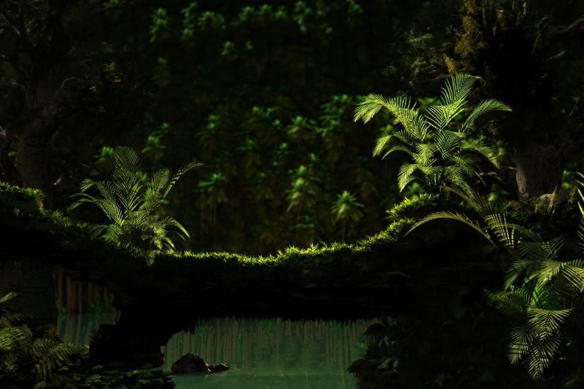 free jungle background 2560x1600