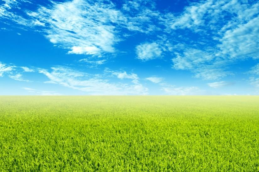 grass wallpaper 1920x1200 for android tablet