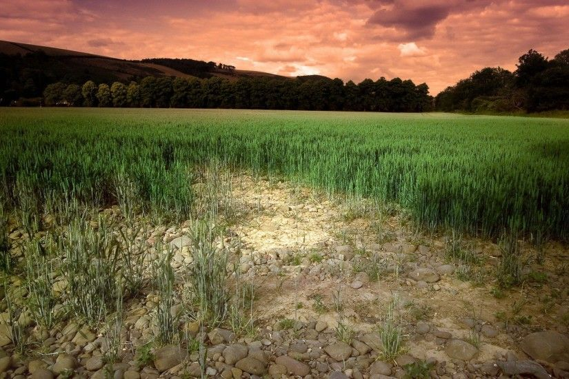 Soil Wallpapers, 38 Free Soil Wallpapers | Backgrounds on .