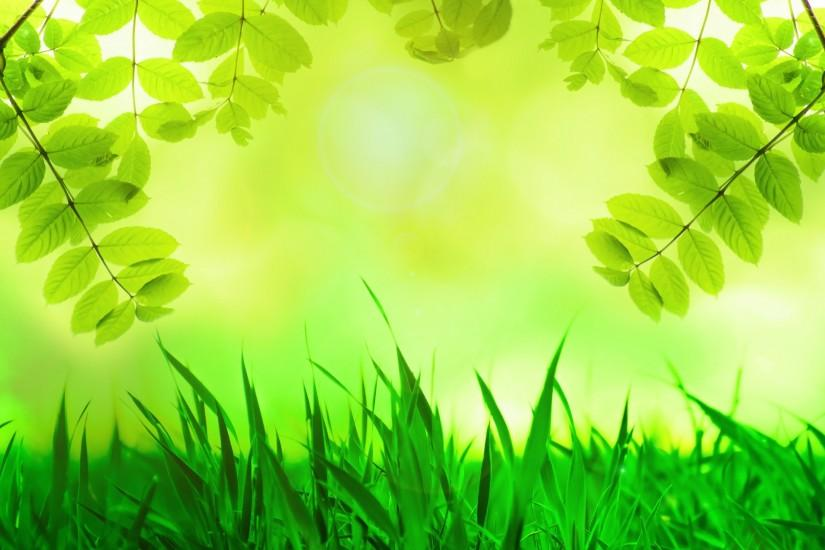green background 1920x1271 windows 10
