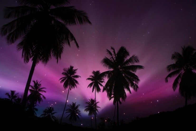 Earth - Sunset Earth Palm Tree Silhouette Tropical Sky Starry Sky Purple  Wallpaper
