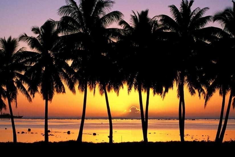 Download Wallpaper Palm Trees at Sunset, Cook Islands (1920 x 1080 .