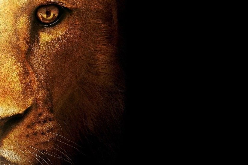 Powerful Lion Wallpapers for Your Desktop Lion Wallpaper Wallpapers)