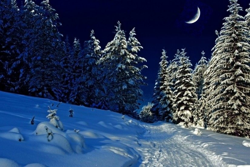 Winter - Ice Evening Season Snow Trees Night Forest Woods Winter Path Moon  Way Nature Frost