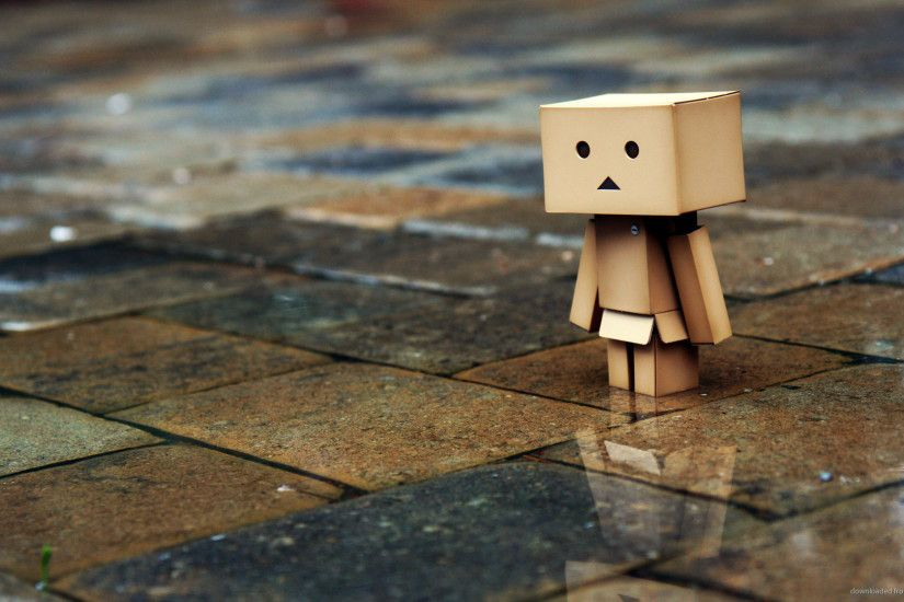 Danbo Rain for 1920x1080