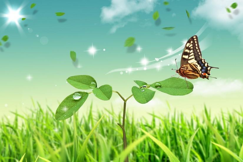 beautiful butterfly background 1920x1200 full hd