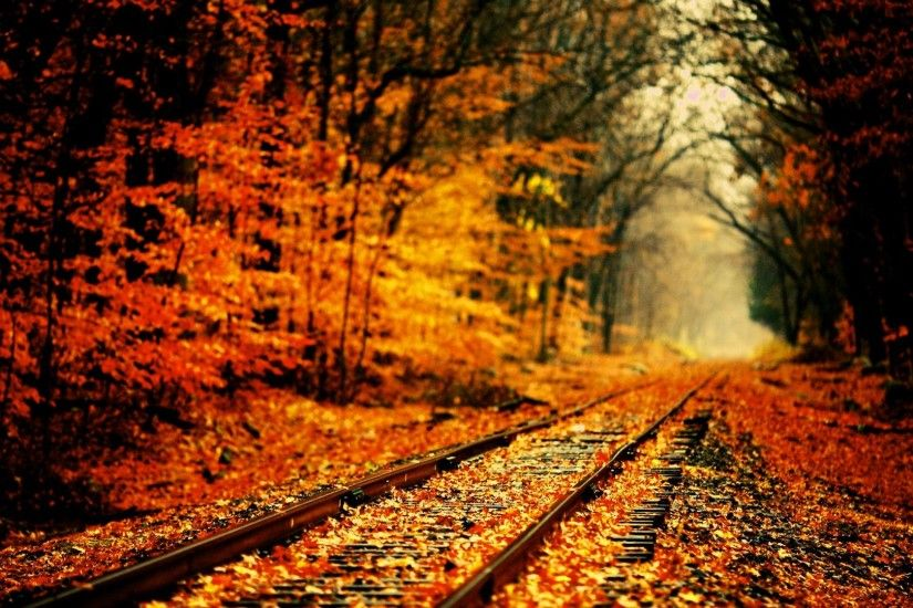 High Definition Fall Wallpapers