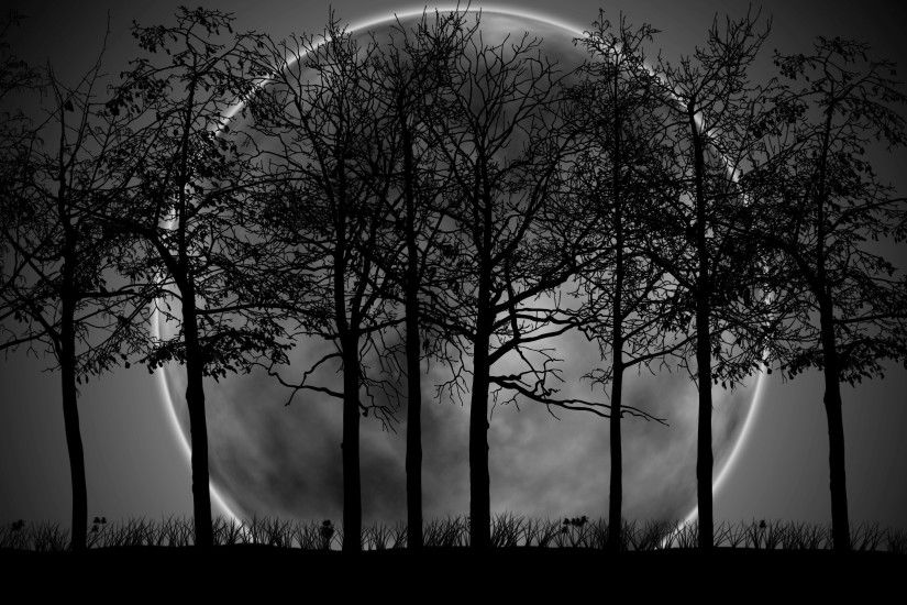 Dark forest moon wallpaper hd.