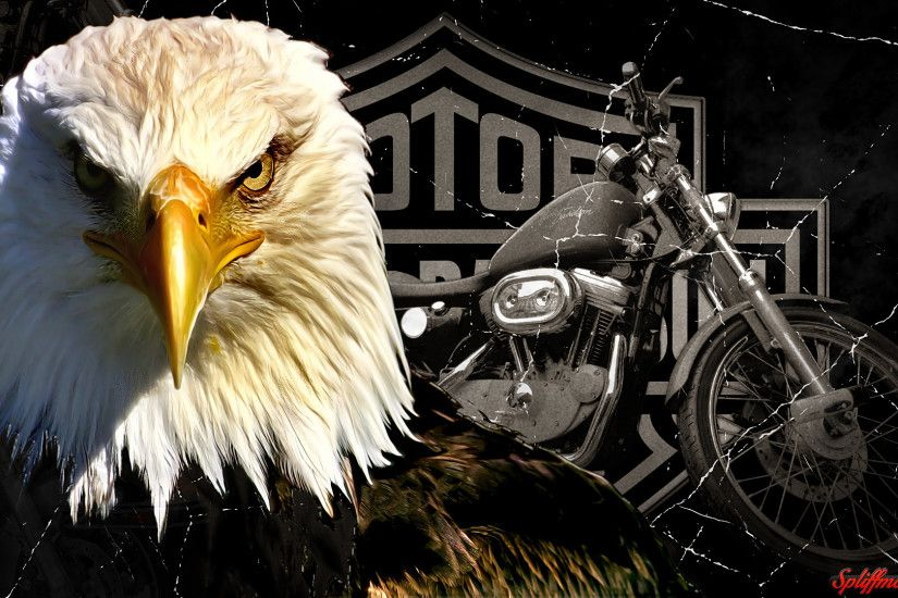 hd-harley-davidson-wallpaper.png (1920×1080)