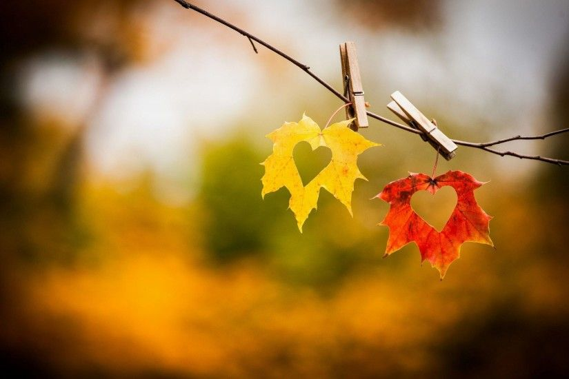 Autumn leaves awesome love wallpaper