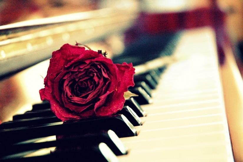 download piano wallpaper 2804x1864 for hd