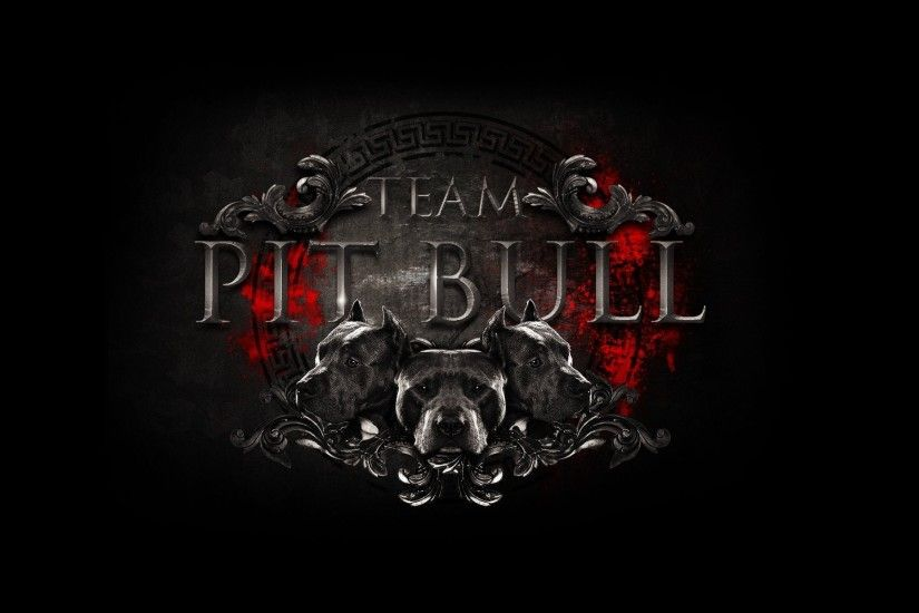 mma logo logo logo team pit bull team fight club mixed martial arts mixed  martial arts