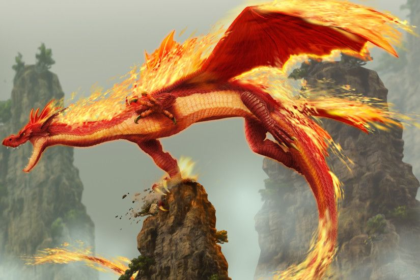 Fire Dragon for 2560x1440