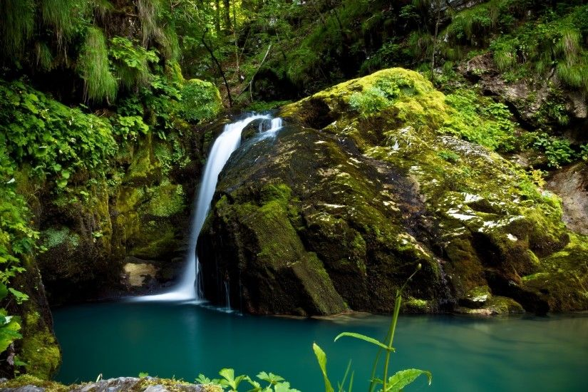 Forest waterfall on mossy rocks reaching to the clear water wallpaper