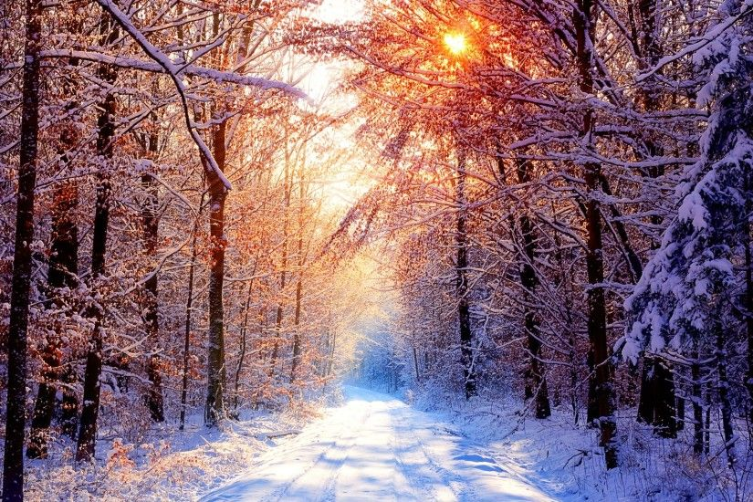 ... Snowy day in the mountain - Winter & Nature Background Wallpapers .