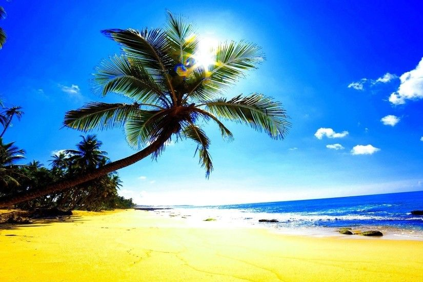 1920x1080 Wallpaper beach, sand, palm trees, sun, glare, ocean, tropics