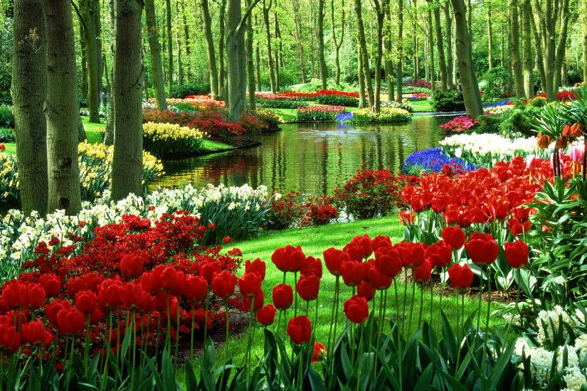 hd garden wallpapers natural. Â«Â«
