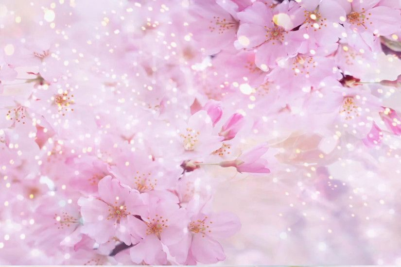 Pink Flowers - Abstract Wedding Background 01