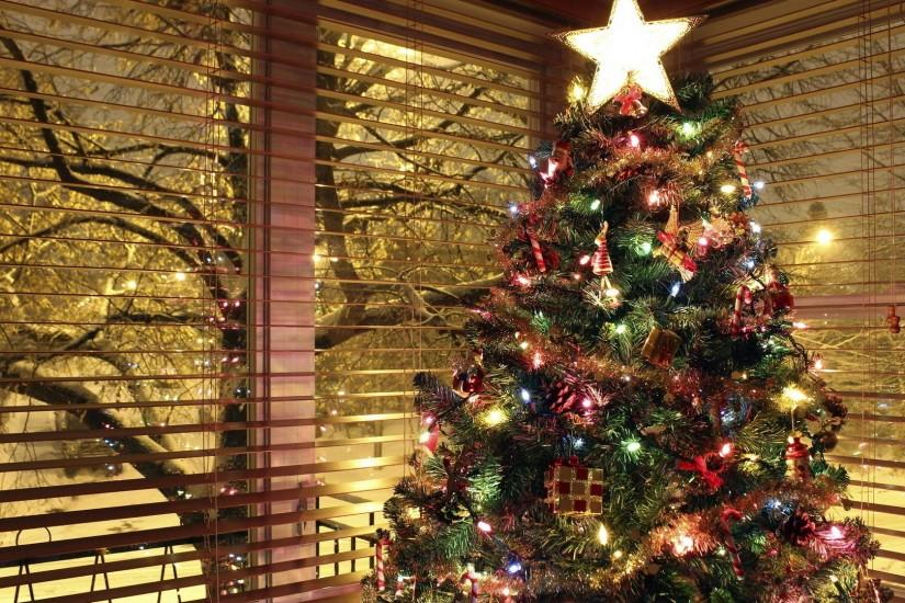Beautiful Christmas Tree Wallpapers (33)
