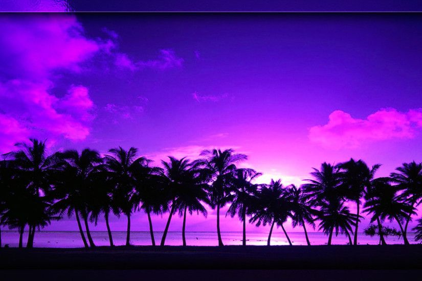 BEACH SUNSET PALM TREE WALLPAPER