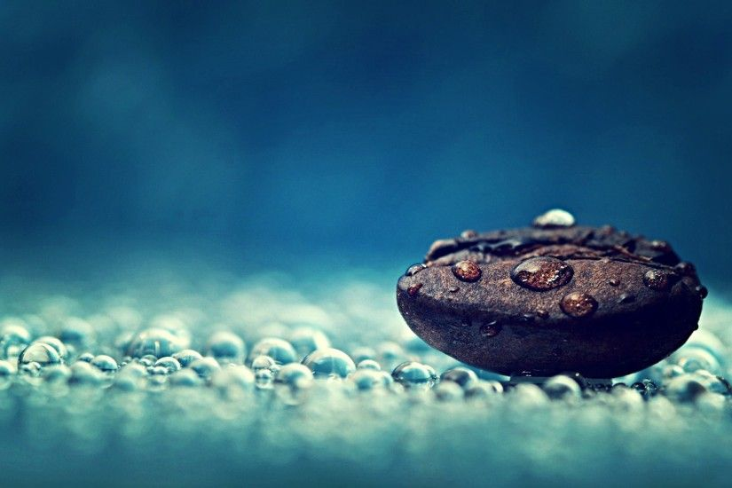 Coffee bean water drops close-up macro photography Free HD Wallpaper