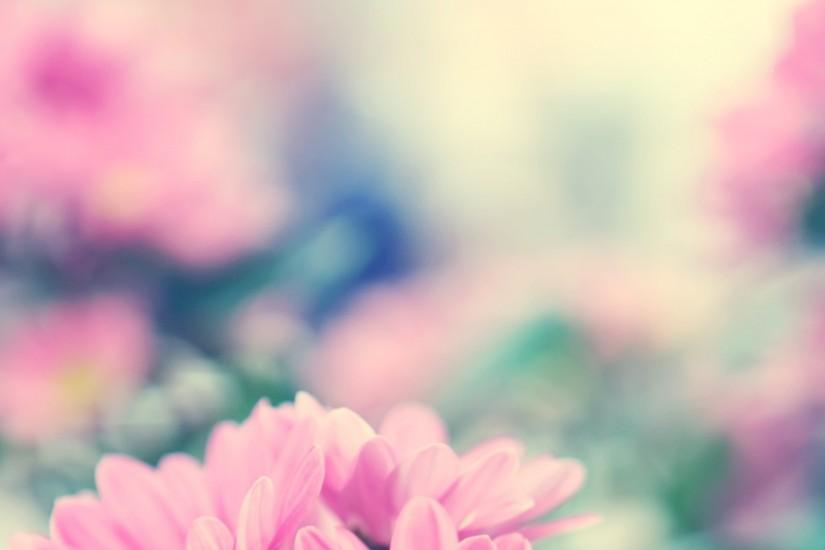 download pastel background tumblr 2560x1440 for android