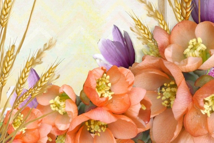 Grains Tag - Miracle Nature Flowers Autumn Peach Grass Lavender Wheat  Summer Fall Orange Oats Soft