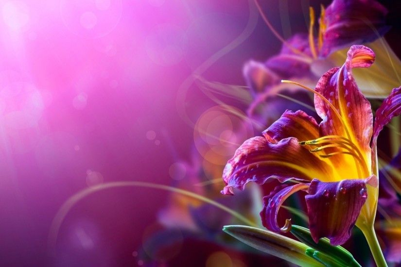 8. pretty-flower-wallpapers8-600x338