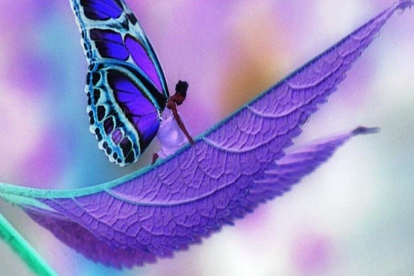 Cute Butterfly Wallpaper - WallpaperSafari