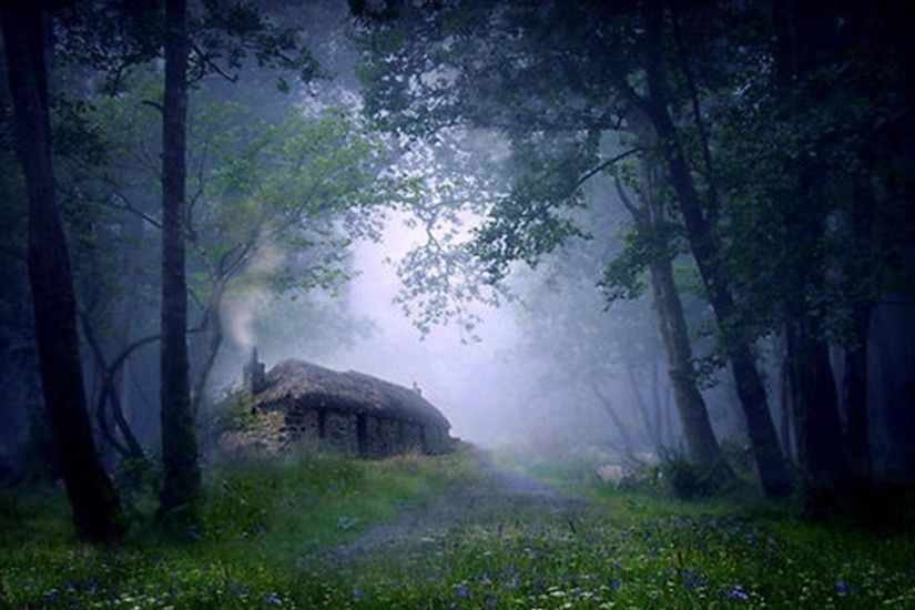 Cottage, In, The, Woods, Desktop Wallpapers, Cool, Awesome Houses, Home  Images, Healthy Life, Country Houses, Stock Photos, High Resolution, ...