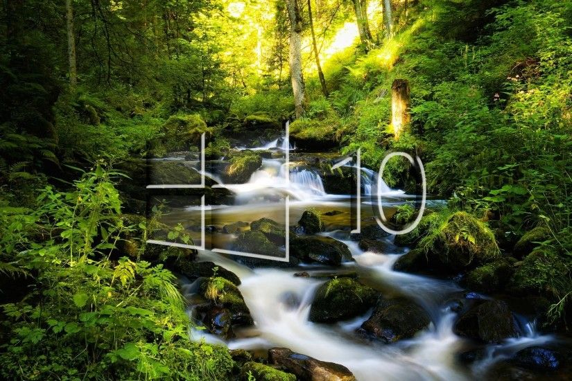 Windows 10 on sun rays in the forest glass logo wallpaper .