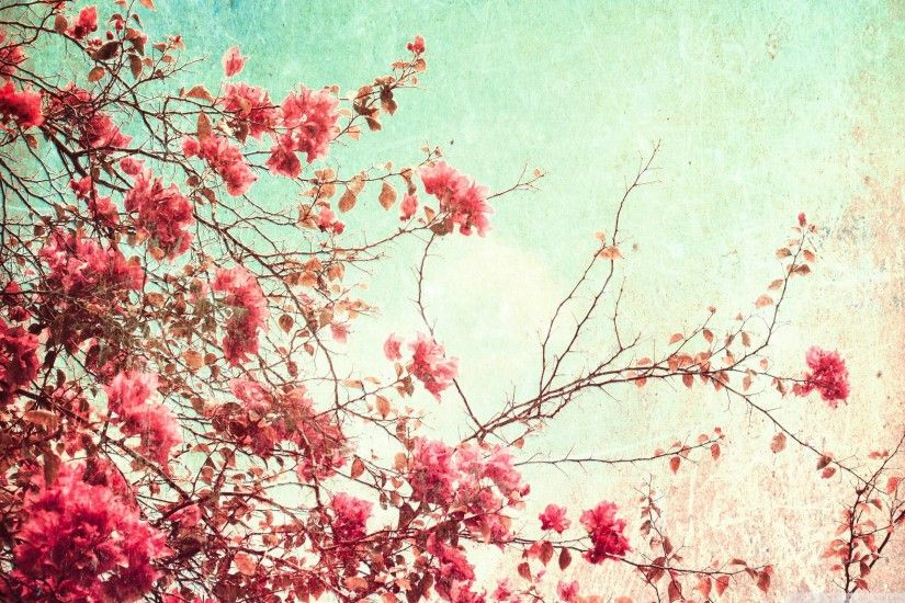 Vintage Flowers Photography Wallpaper