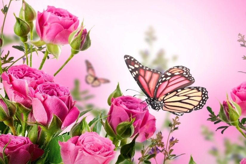 Butterfly With Flowers Wallpapers Al097b