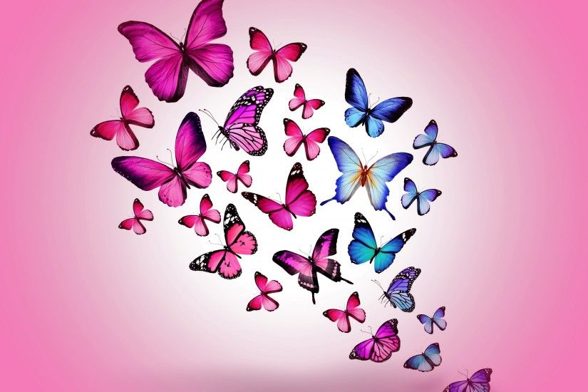 Butterfly pink background #9879