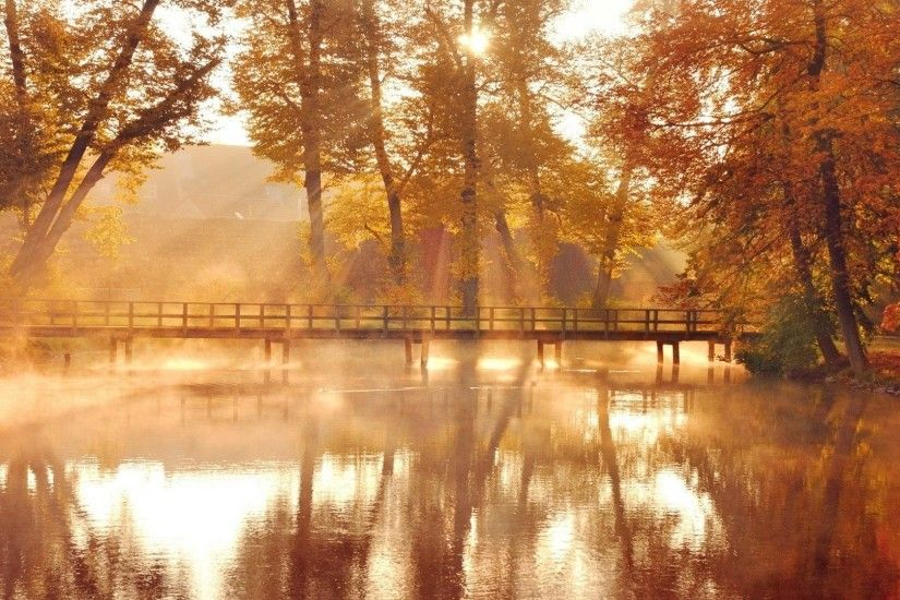 Sunny Autumn Bridge Reflections Parks Bridges Nature Fall Trees Wallpaper  Pictures Free