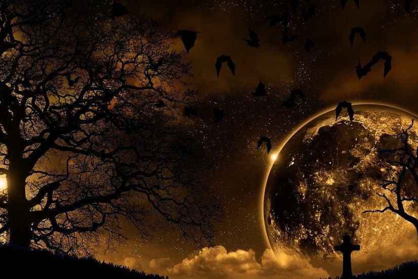 Preview wallpaper trees, nature, night, planet, birds, landscape 1920x1080