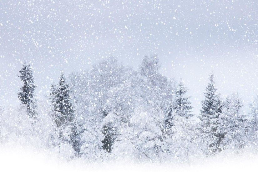 Snow Background (13 Wallpapers)