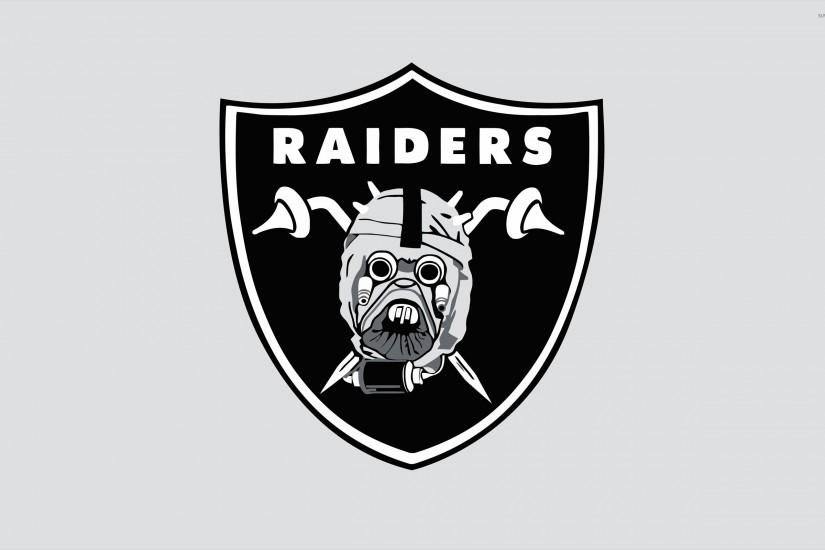 raiders wallpaper 2560x1600 for windows 7