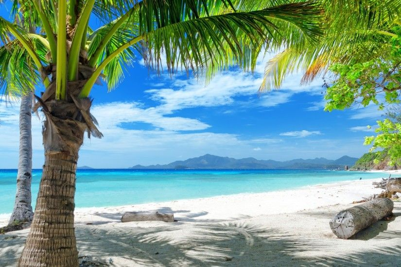 Summer beach, sand, palm trees wallpaper 1920x1080 Full HD