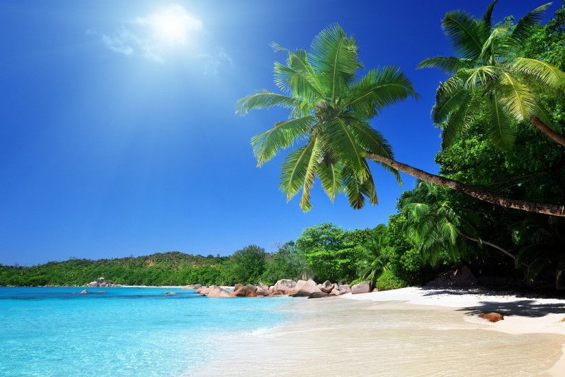 Preview wallpaper beach, sand, palm trees, tropical 1920x1080